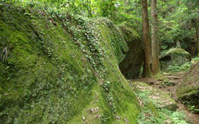 石老山ハイキングコース