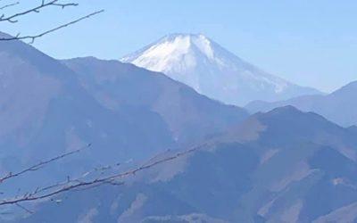 石老山 被害状況調査
